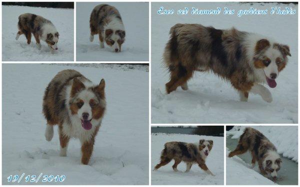 WE du 18-19 décembre 2010 sous la neige avec les cousins Esco et Farouk