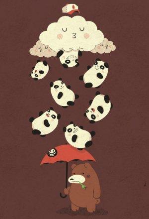 IL PLEUT DES PANDAS  !!
