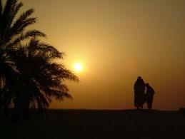 belle la vie en sahra