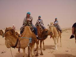 la tunisie en force