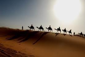 viva la sud du tunsie