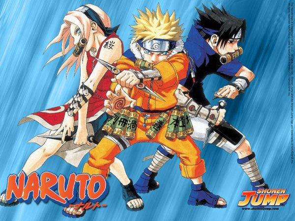 Naruto - Résumé