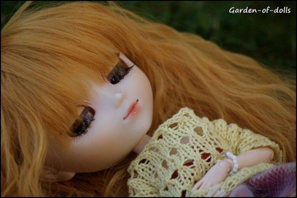 Garden of Sakura => Suite