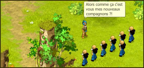 Composition des team & Mini Team