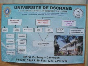 L'UNIVERSITE DE DSCHANG PEUT JOUER UN RÔLE CAPITAL DANS LA PRODUCTION LOCALE DU RIZ