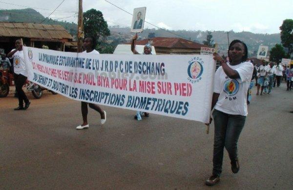 Anniversaire RDPC : où sont passés les militants ?