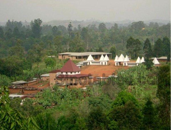 Communautés : Cambriolage rocambolesque dans le palais royal de Fongo-Tongo