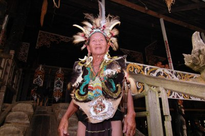 Dayak indigenous Culture broad east kalimantan, version 2