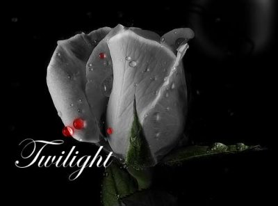 *********marylinetwilight*********