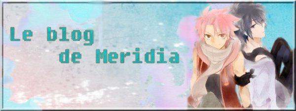 Bannière pour Meridia II