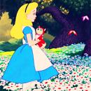 Photo de faerie