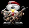 team-pingouin03