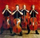 Photo de celloconfrerie