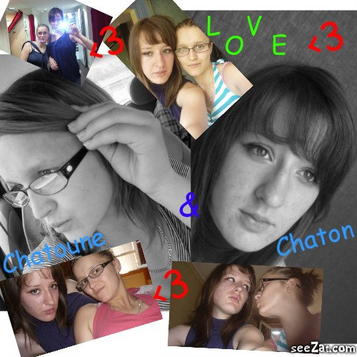 Chaton <3