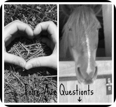 ♥ Foire Aux Questiont ♥