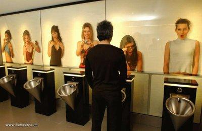 nouvelles toilettes
