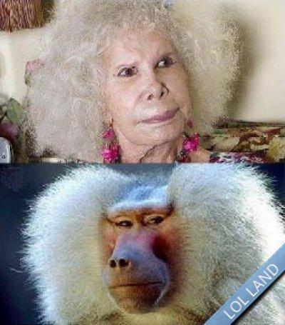 ressemblance ^^