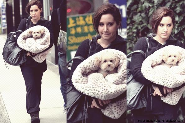 8 mars 2011 -Ashley a été aperçue allant à la gym à Vancouver avec sa chienne Maui.