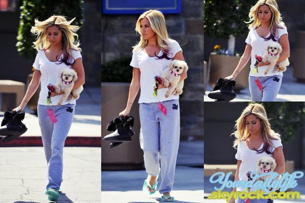 - Lundi 9 Avril • Ash' - de retour de Santa Barbara - s'est rendue dans un salon de manucure, Toluca Lake. Ash' était accompagnée de sa chienne Maui. Concernant sa tenue, j'aime bien notamment ses bottes fourrées. Elle est resplendissante! ♥ -