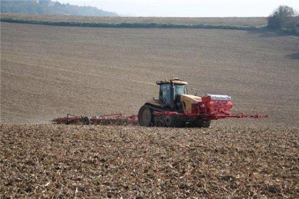 semie de blé dans le 47 à leyrizt moncasin