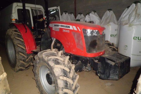 mf 3645 tracteur pour verger et pour les terrres