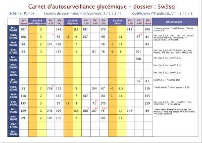 carnet autosurveillance diabete