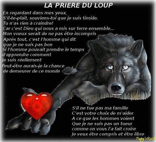 La prière du loup