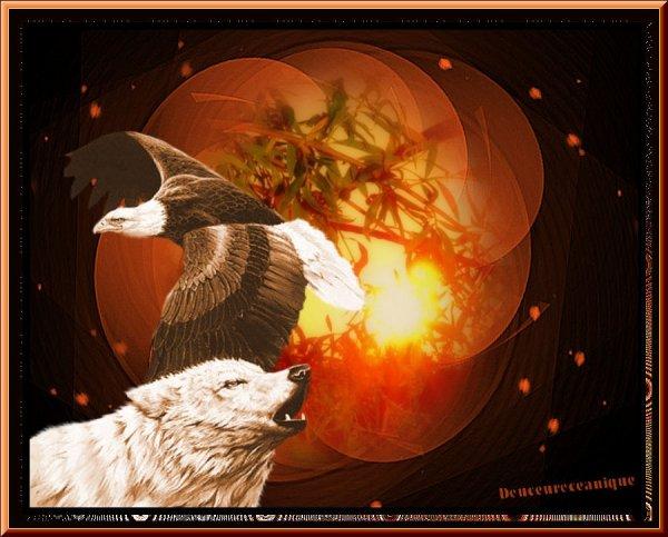 L'aigle et le loup