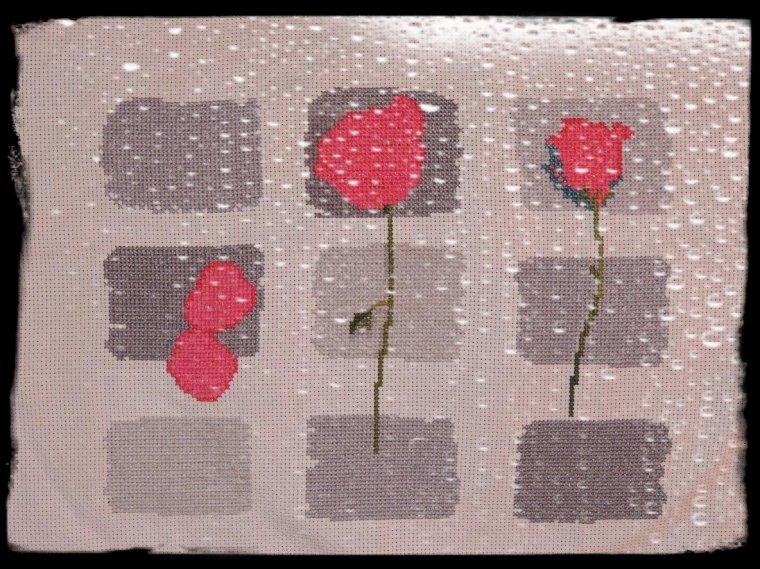 Point de X terminé sur le thème de la Rose...