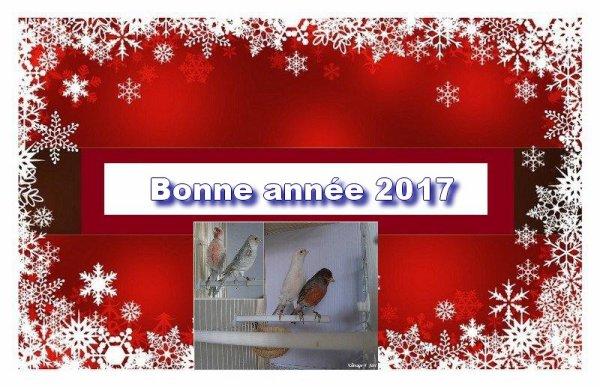 BONNE ANNE 2017