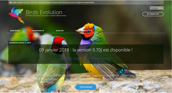 Birds Evolution Pro