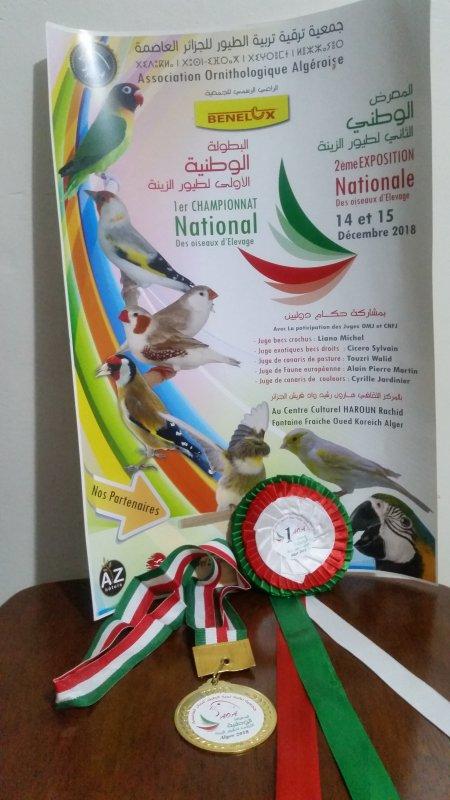 Concours: 1er CHAMPIONNAT NATIONALE D'ALGÉRIE