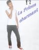 _____________-__Ss       Le  Prince  charmant       sS__-_____________        $)