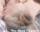 Photo de New-Moon-Chapitre2