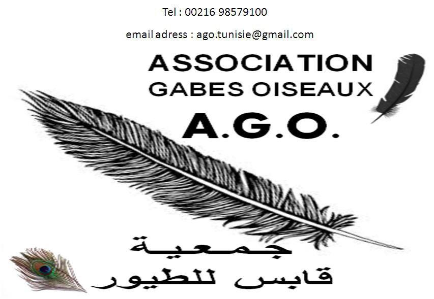 ASSOCIATION GABES OISEAUX Un nouveau né sur la scéne ornithologique régionale et Tunisienne