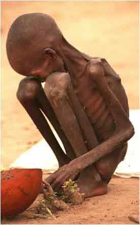 1000000000 de personnes ont faim dans le monde