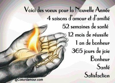 VOICI DES VOEUX POUR LA NOUVELLE ANNEE 2011