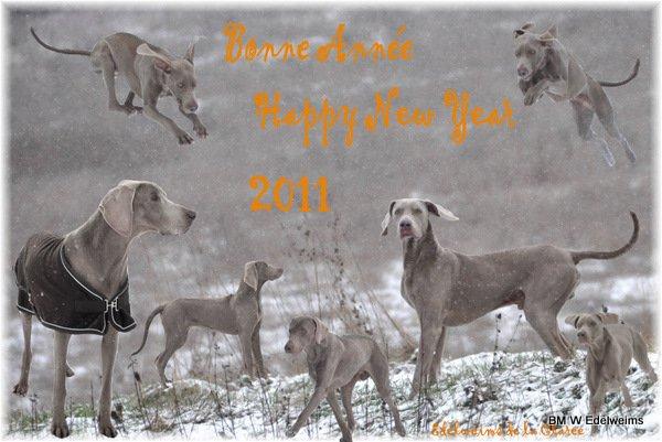 Merveilleuse année à tous les fils, filles, petit-fils, petite-filles, arrière..., arrière arrière... et à vos propriétaires
