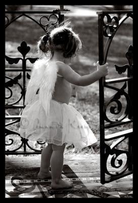 Petit  ange ...