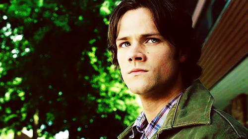 Winchester.♥