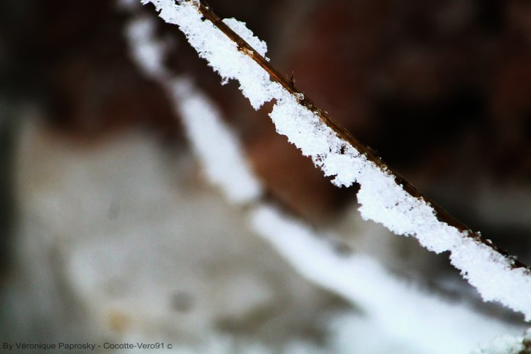 Neige Abstraite
