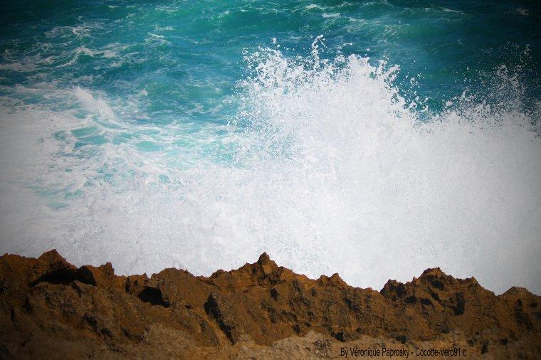 Les éléments de la mer