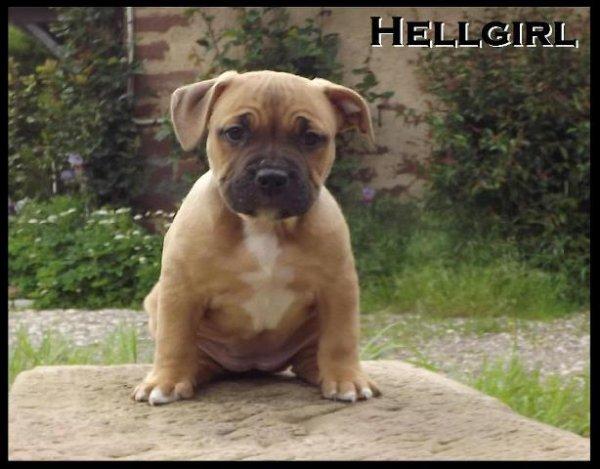 Hellgirl nouvelle fille a la maison