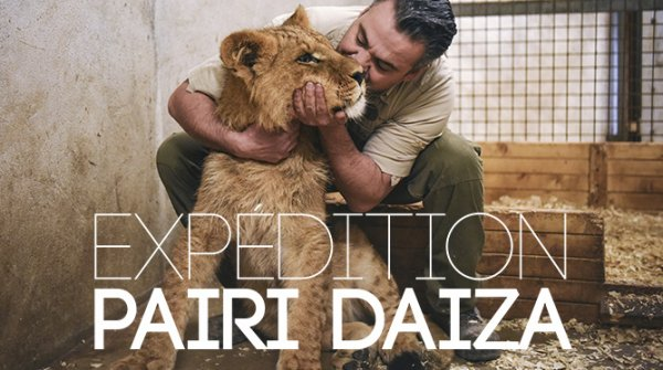 expédition pairi daiza