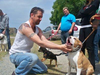 Journée chiens du 22 mai 2011