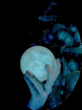 Tom Elvis Jedusor (alias Lord Voldemort) partie 2 ( ascension au pouvoir)