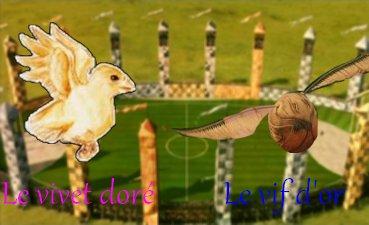 Quidditch: Le vif d'or