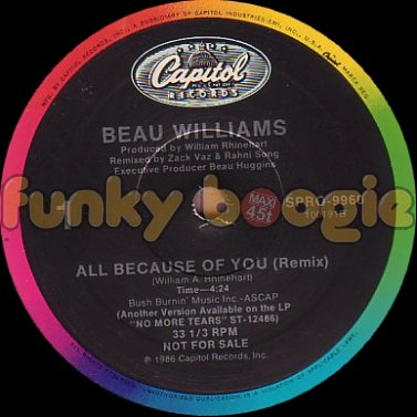 Beau Williams - All Because Of You (Remix)