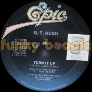 Q.T. Hush - Turn It Up