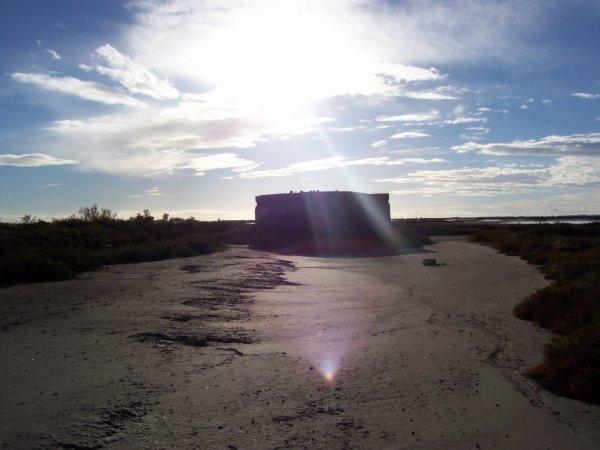 Bunker allemand - Camargue, 09/11/2010
